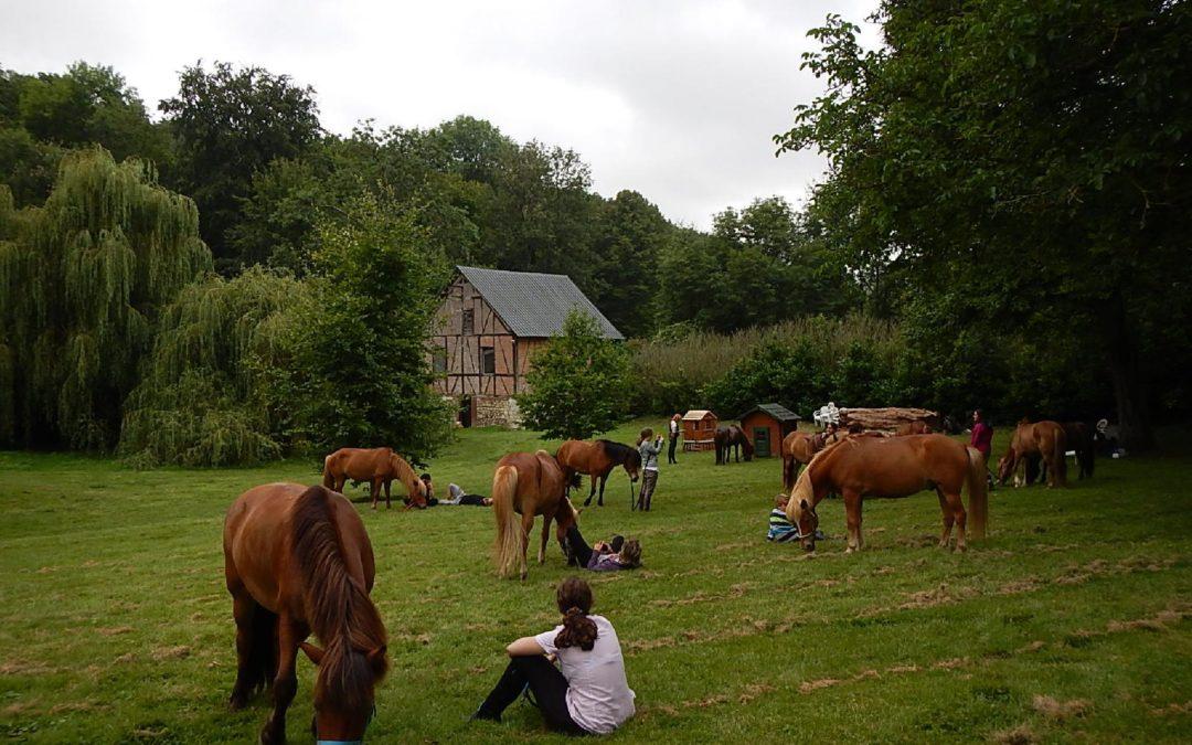 Randonnée en Pays de Bray (adultes/familles)