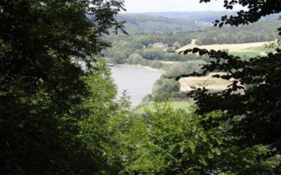 Chevauchée en Vallée de Seine (adultes/familles)